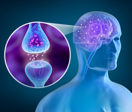 Vegetacine nervu sistema veikiantys vaistai